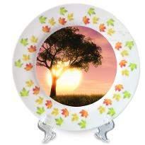 Adorable Ceramic Plate