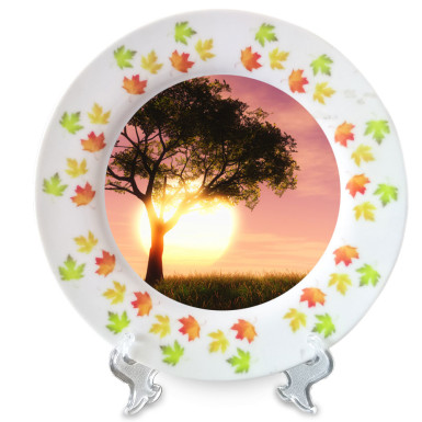 Buy Adorable Ceramic Plate
