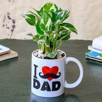 Refreshing Money Plant in I Love Dad Mug