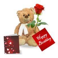 Single roses with teddy bear
