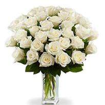 Alluring Bouquet Of 36 White Roses