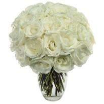 24 White roses