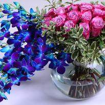 Blue Orchids and Pink Roses