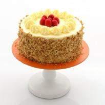 Vanilla Cake Midi