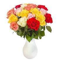 20 Rainbow Roses