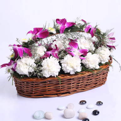 Image result for Beautiful Delight flower